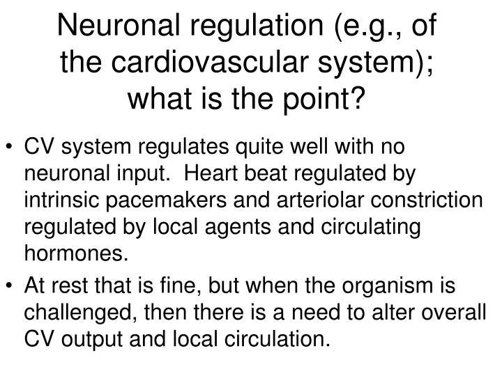 Neuronal regulation (e.g., of the cardiovascular system);