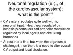 neuronal regulation e g of the cardiovascular system what is the point
