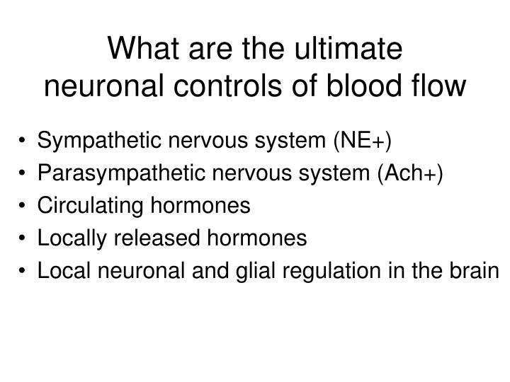 What are the ultimate neuronal controls of blood flow