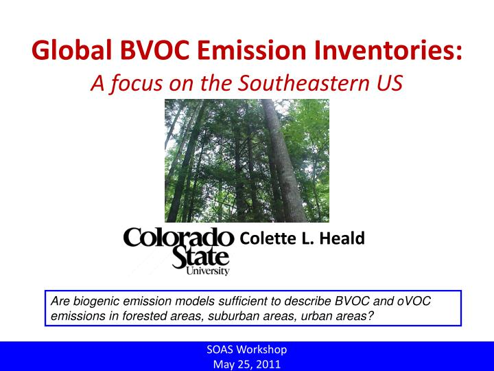 Global BVOC Emission Inventories: