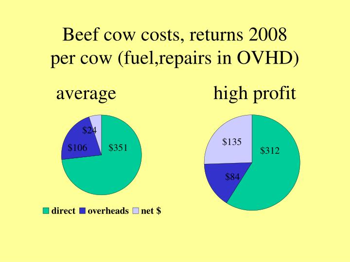 Beef cow costs, returns 2008