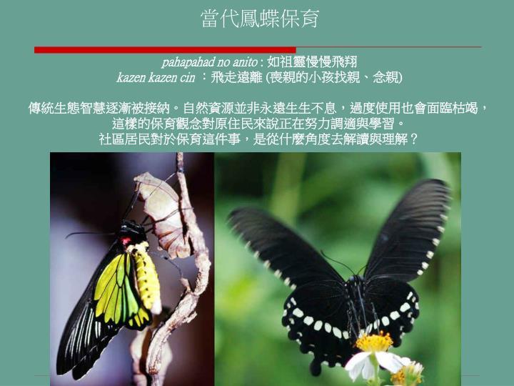 當代鳳蝶保育