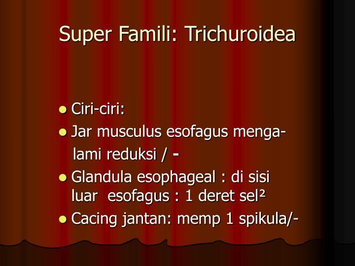 Super Famili: Trichuroidea