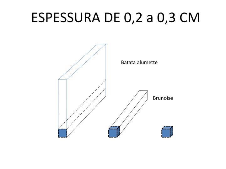 ESPESSURA DE 0,2 a 0,3 CM