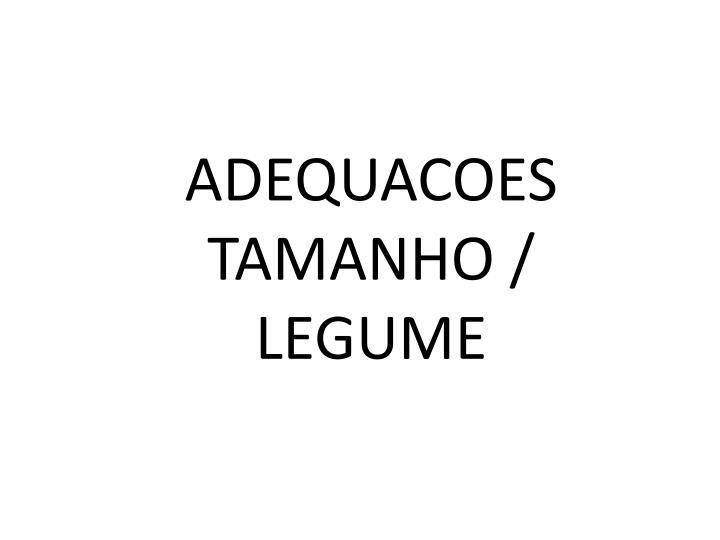 ADEQUACOES TAMANHO /