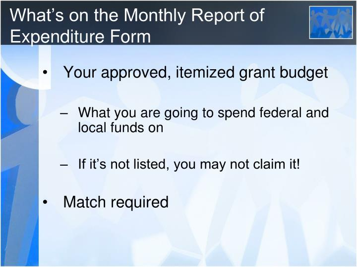 What's on the Monthly Report of Expenditure Form