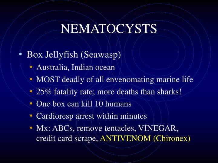NEMATOCYSTS