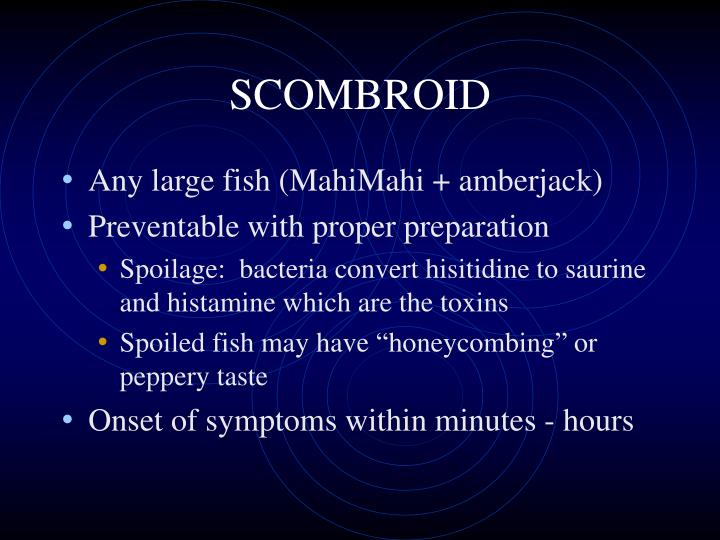 SCOMBROID
