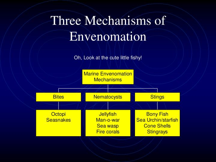 Three Mechanisms of Envenomation