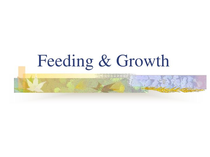 Feeding & Growth