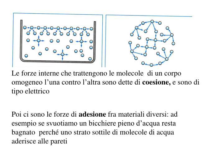 Le forze interne che trattengono le molecole  di un corpo omogeneo l'una contro l'altra sono dette di