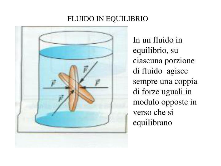 FLUIDO IN EQUILIBRIO