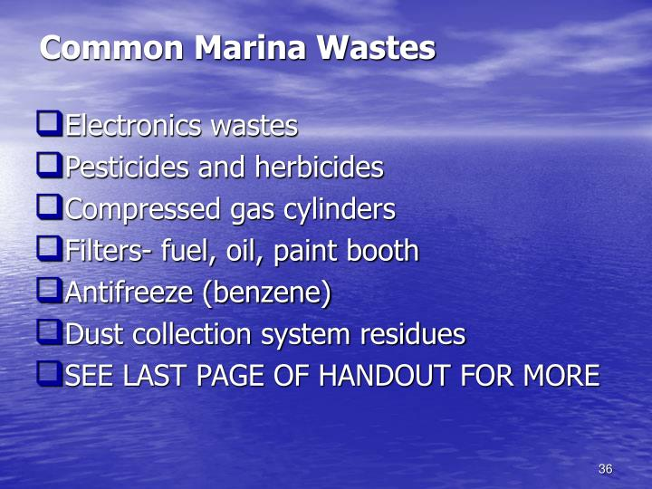Common Marina Wastes