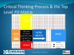 critical thinking process the top level pd matrix