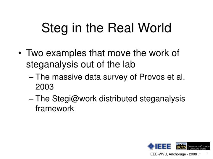 Steg in the real world