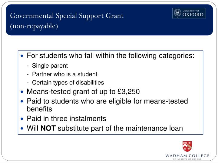 Governmental Special Support Grant