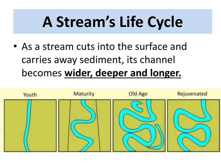 A Stream's Life Cycle