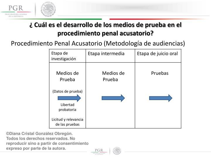 ¿ Cuál es el desarrollo de los medios de prueba en el procedimiento penal acusatorio?