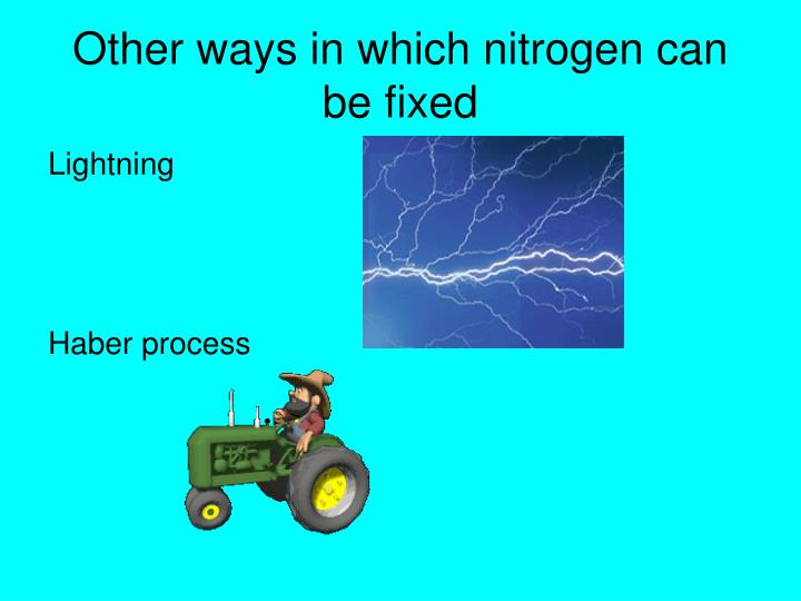 Other ways in which nitrogen can be fixed