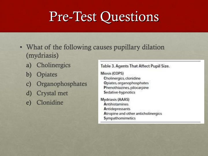 Pre-Test Questions