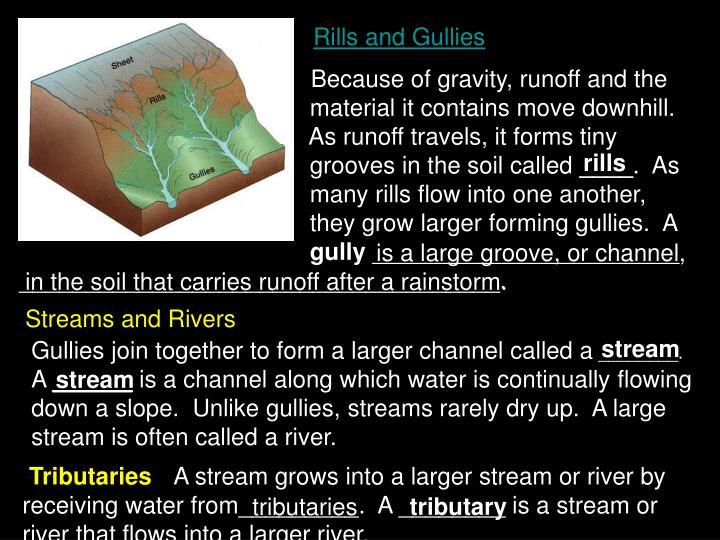 Rills and Gullies
