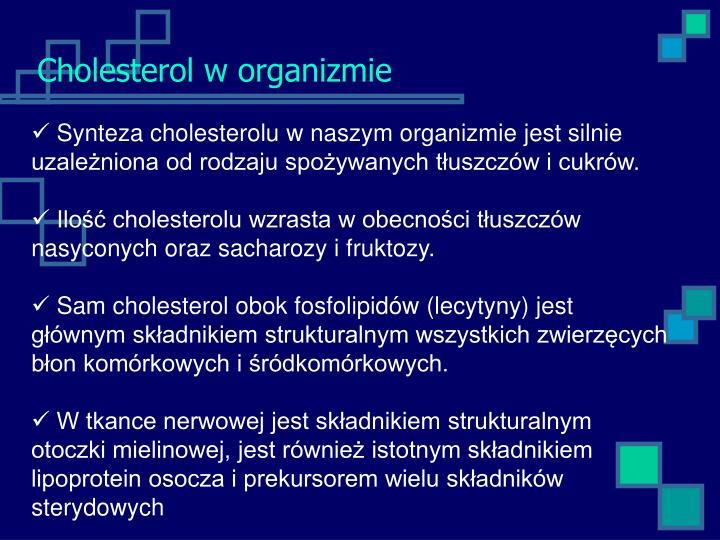 Cholesterol w organizmie