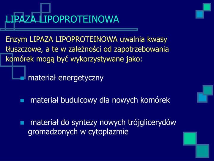 LIPAZA LIPOPROTEINOWA