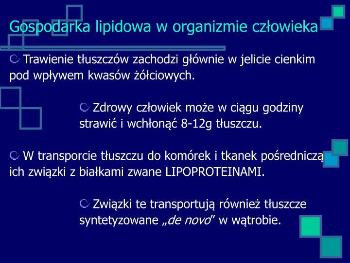 Gospodarka lipidowa w organizmie człowieka