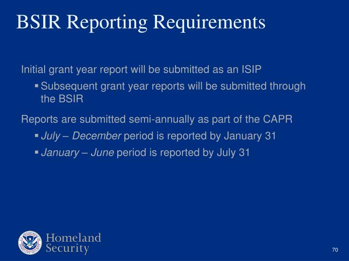 Initial grant year report will be submitted as an ISIP