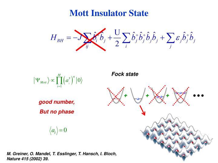 Mott Insulator State