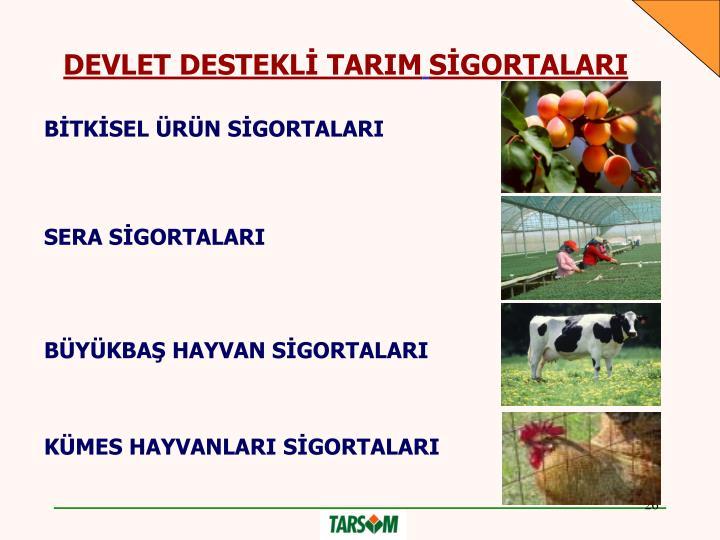 DEVLET DESTEKLİ TARIM