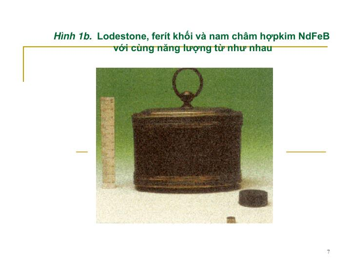Hnh 1b.