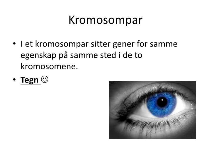Kromosompar