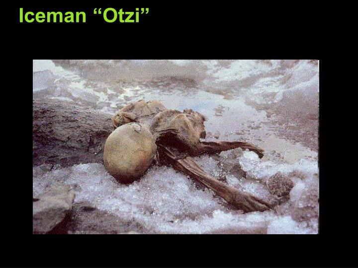 """Iceman """"Otzi"""""""