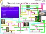 muusa is designed with crm as a guideline