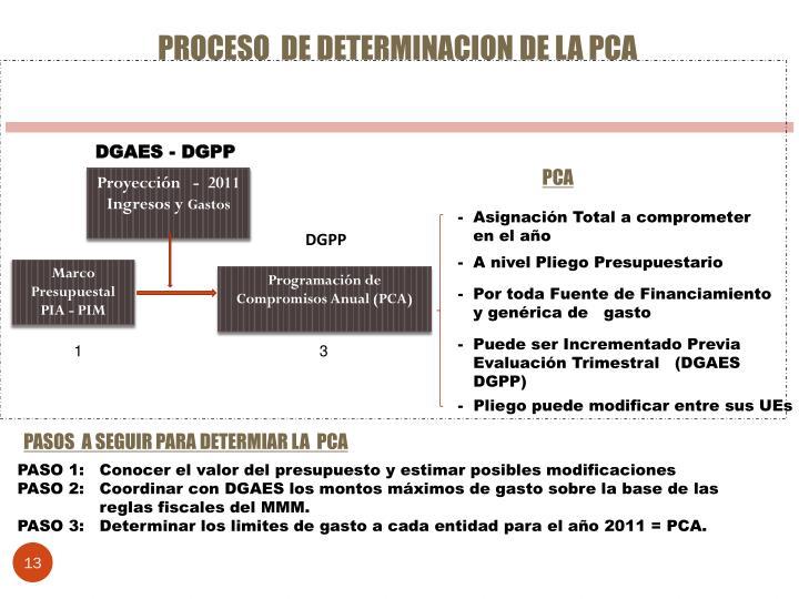 PROCESO  DE DETERMINACION DE LA PCA