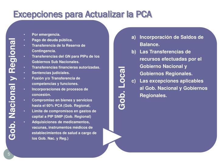 Excepciones para Actualizar la PCA