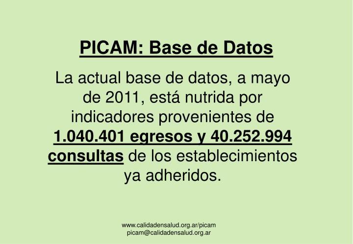 PICAM: Base de Datos
