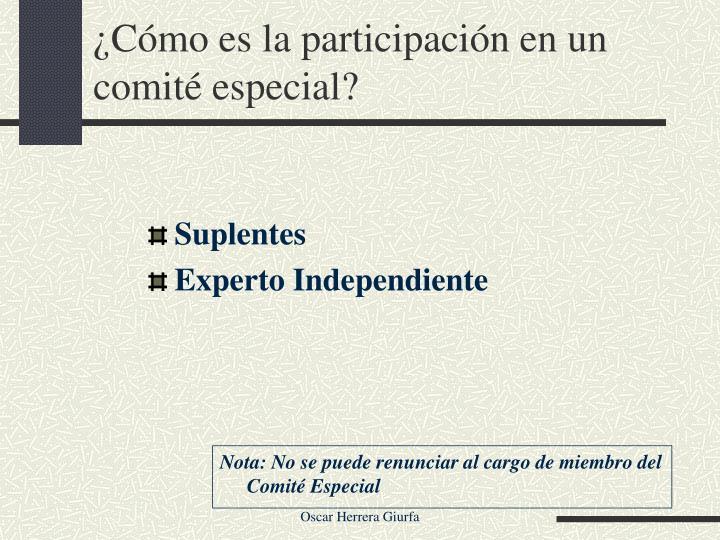 ¿Cómo es la participación en un comité especial?