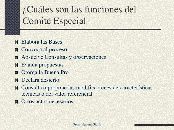 ¿Cuáles son las funciones del Comité Especial