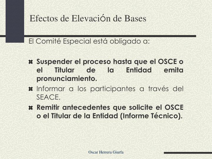 El Comité Especial está obligado a: