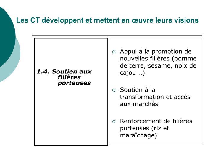 Les CT développent et mettent en œuvre leurs visions