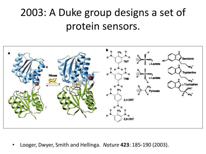 2003: A Duke group designs a set of protein sensors.