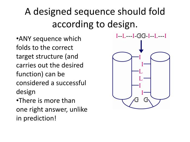 A designed sequence should fold according to design.