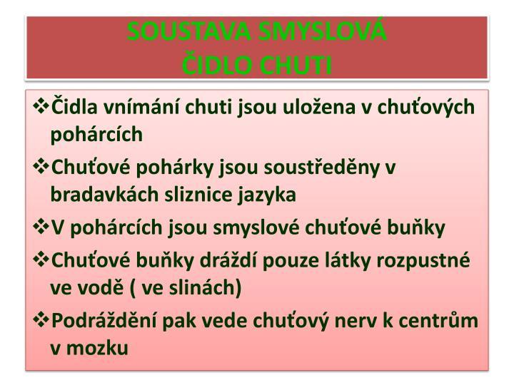 SOUSTAVA SMYSLOVÁ