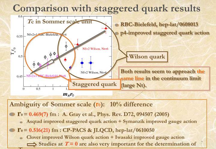 Wilson quark