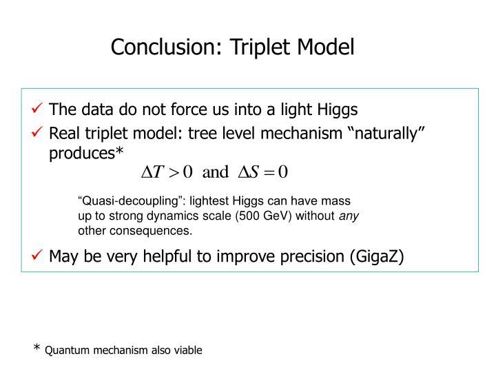 Conclusion: Triplet Model