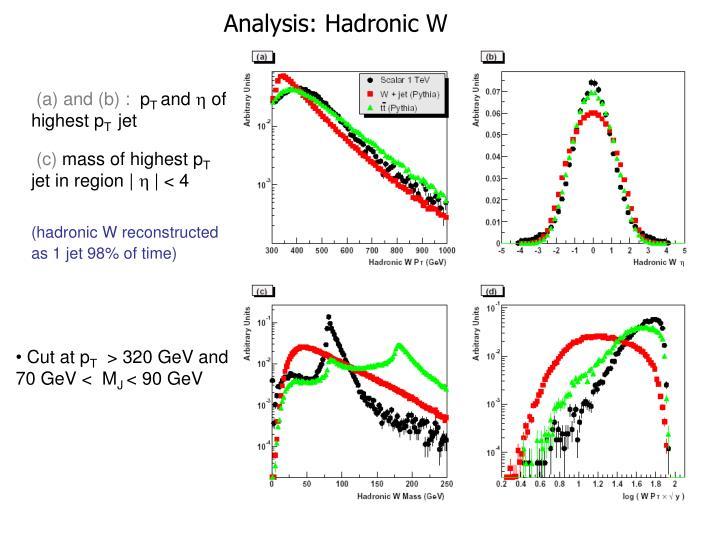 Analysis: Hadronic W