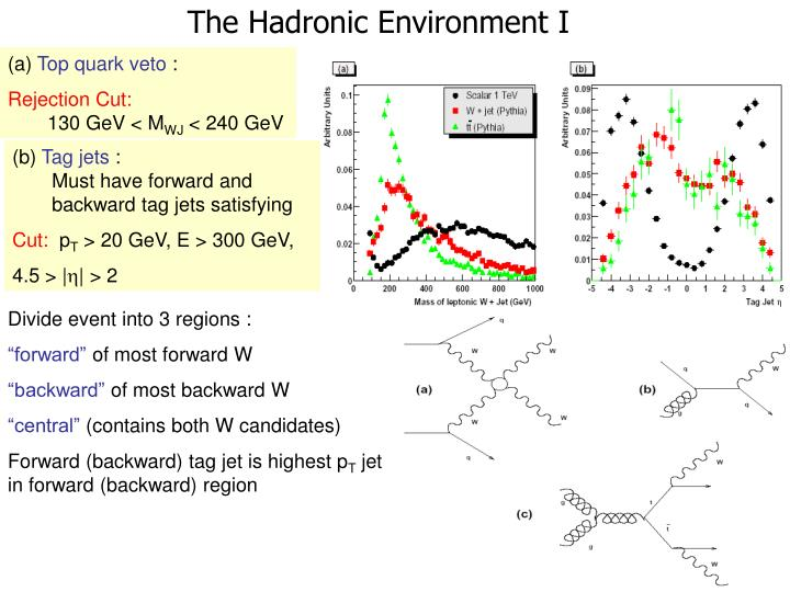 The Hadronic Environment I