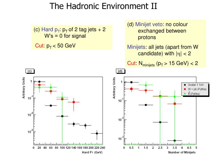 The Hadronic Environment II